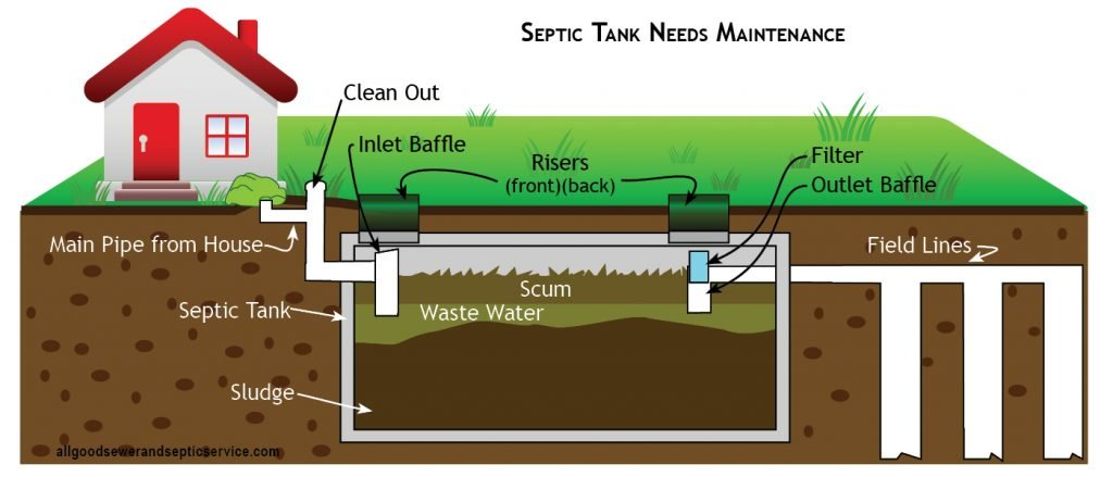 how does a septic tank work, graphic