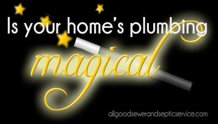 magical plumbing doesn't exist, items never to flush